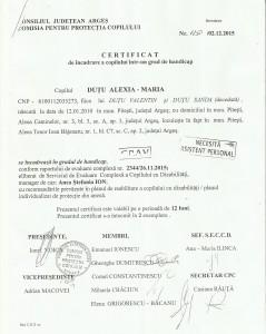certificat handicap2